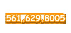 561-629-8005